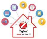 다채로운 Zigbee WiFi는 원격 제어 LED 라이트 터치 스위치 및 단추 스위치를 전환한다