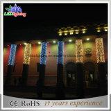 La stringa bianca calda dell'indicatore luminoso 100 LED di festa IP44 illumina gli indicatori luminosi di natale