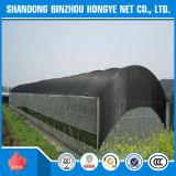 UV da tampa do jardim dos tamanhos da rede preta do pára-sol do engranzamento vário protegido