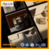 Uitstekende kwaliteit het Mooie Model die van de Bouw van de Schaal van de Bouw Model/Architecturale het Model van de Factor/van de Bouw/het Model van de Planning van de Streek maken