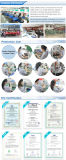 Pumpen des Gleichstrom-zentrifugale Miniwasser-12V (TL-B10)