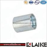 Encaixes da virola do aço inoxidável para a mangueira de SAE100 R2at/DIN20022 2sn (00210)