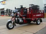 200cc por carretera triciclo de la motocicleta para el mercado africano