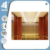 Ascenseur de luxe de maison de décoration de la capacité 250kg