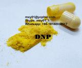 Влияние 2 Exellent, 4-Dinitrophenol DNP для тучного Burnner CAS 51-28-5