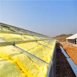 Granja avícola prefabricada de la estructura de acero de la construcción rápida
