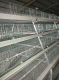 Las aves de corral automáticas de la alta calidad enjaulan para la parrilla y la capa