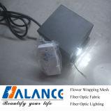 Fibre optique de DEL Lighting Kit pour Sky étoilé Ceiling Decoration