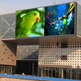 Im Freien P10 farbenreiche RGB LED-Bildschirmanzeige-Baugruppe