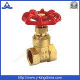 Brass Puerta de control de válvula de agua con hierro manejar / Aluminio (YD-3006)