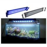 米国ヨーロッパ等へのFree ShippingのFish Reef Tankのための30cm 6W White Blue LED Aquarium Light