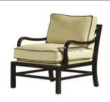 Ganascia del bracciolo--Mobilia di legno della mobilia dell'hotel