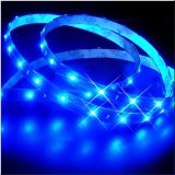Luces de tira flexibles de 300LEDs LED de 2835 12V