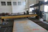 Het Project van Dwe van de Kraan (Capaciteit 900MT)