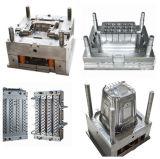 中国の専門職デザイン製造プラスチック型の統合
