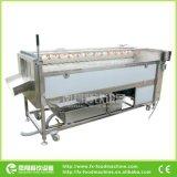 Machine van de Was en het Oppoetsen van de Taro van de Wortel van de Aardappel van de Nevel van de hoge druk de Automatische