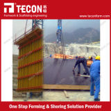 Madeira compensada da construção da boa qualidade de Tecon