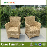 5cm Cushion를 가진 H-Outdoor Round Wicker Chair
