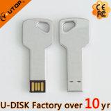 Горячая изготовленный на заказ ручка памяти USB формы ключа логоса (YT-3213-04)