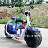 motorino elettrico grasso di 800W Harley con il dente blu