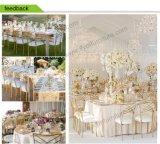 Стул Chiavari венчания утюга оптовой низкой цены самомоднейший для случаев гостиницы