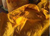 Amarillo 13 del pigmento