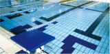 De standaard Tegel van het Zwembad voor Badkamers/Openlucht Gebruikte Rd1214