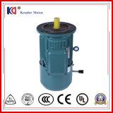 전기 자석 삼상 전기 브레이크 모터
