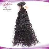 最もよい品質の安い卸売価格のブラジルの自然な波のバージンの人間の毛髪