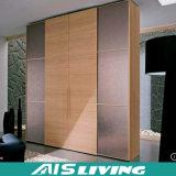 Armadio multifunzionale del guardaroba della camera da letto di memoria (AIS-W204)