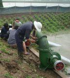 Motor Diesel de China - bomba de água de superfície conduzida para a irrigação