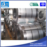 Катушка качества экспорта горячая окунутая гальванизированная стальная