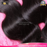Machine Weft 100% No Hair Dye Indian Body Wave Cutícula Virgin Hair