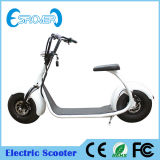 Tire grande Two Wheel Electric Motorcycle para Sale (Esrover E5)