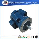 중국 Handmade 우물물 펌프 모터에서 숙련되는 제조 공급자
