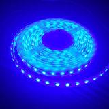 Tipo indicatore luminoso del silicone IP65 di striscia del LED per i negozi