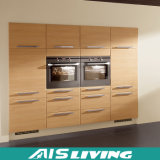 Mobília dos gabinetes de cozinha da cor da natureza do armazenamento (AIS-K293)