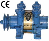 Diesel marino Engine Cooling Sea Water Pump con Clutch Cina
