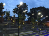 Überlegene angeschaltene Solargarten-Solarbeleuchtung Syatem mit PIR Bewegungs-Fühler