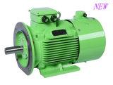 B35 AC van de Elektrische Motor van de Magneet van de Controle van de Snelheid van de Omzetting van de Frequentie Permanente Motor B35