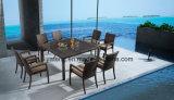 Мебель сада цены популярного типа напольная дешевая обедая комплект 8-10person (YTA362-1&YTD020-3)