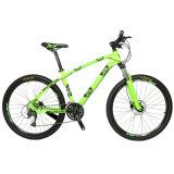 Vendita della bici di montagna della bicicletta di MTB