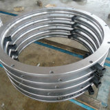Kran-einzelne Reihe Nongear Durchlauf-Ring-Peilung für Kato