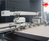 Unidades telescópicas Bmu da manutenção do edifício do mastro da trilha do nível de patíbulo