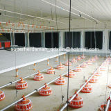 Volles Set Poultry Control Shed Equipment für Breeder