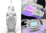 Corps de perte de poids de Cryolipolysis de salon de trois traitements contournant la machine de beauté de Zeltiq