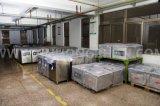 Einzelne Raum-Wärme-Beutel-Vakuummaschine für Nahrungsmittelverpackung