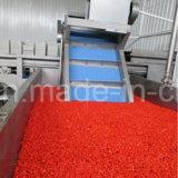Efficace colore rosso Gojiberry dell'alimento della nespola