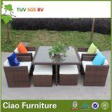Rattan esterno del ristorante che pranza la mobilia stabilita della canna del giardino (CF659)