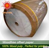Papier excentré de pâte de bois de 100%